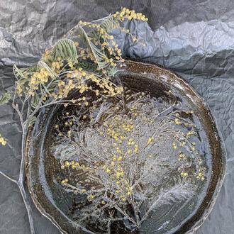 Глиняная тарель  (Веточка мимозы)