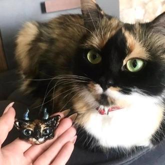 Мини копия котика
