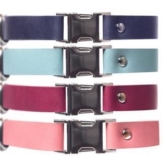 Именной ошейник для собаки из натуральной кожи, на выбор 14 цветов и 4 размера 0184