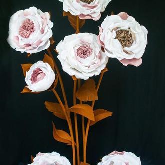 Ростовые цветы стойка на 5 цветов пионовидная роза цвета кофе