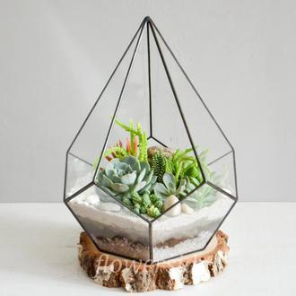 "Флорариум с суккулентами ""Изумрудный сад"""