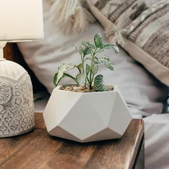 Белый ECO горшок Грани 2.0 для небольших цветов, суккулентов и кактусов