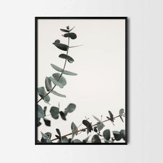 Фотопостер Зеленые ветки