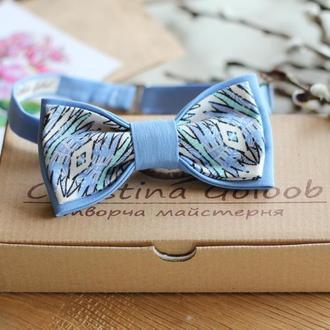 Бабочка двойная голубая