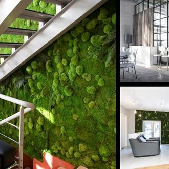 Комбинированные стены из мха и стабилизированных растений