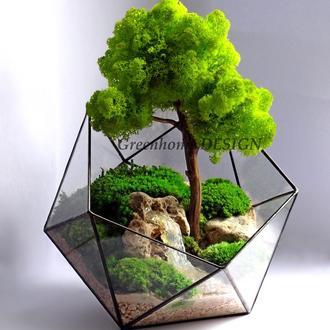 """Геометрический флорариум """"Бонсай"""" (со стабилизированным мхом), диаметр -23 см, общая высота -35 см."""