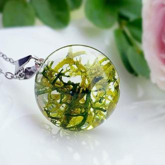 Подвеска-сфера с лесным мхом. Украшения из цветов и растений. (модель № 2619) Glassy Flowers