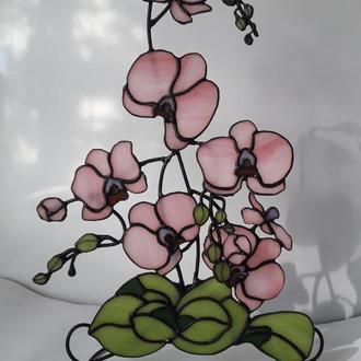 Настольный витраж « Розовая орхидея »