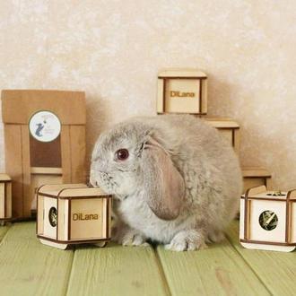 Кубики Для Кроликов