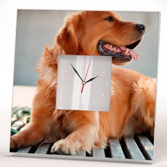 """Необычные настенные часы """"Золотой ретривер"""""""