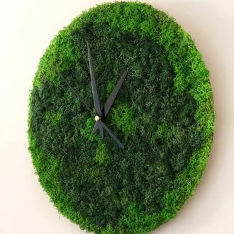 Настенные часы из стабилизированного мха