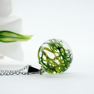 Подвеска-шар с лесным мхом. Украшения из цветов и растений. (модель № 2621) Glassy Flowers