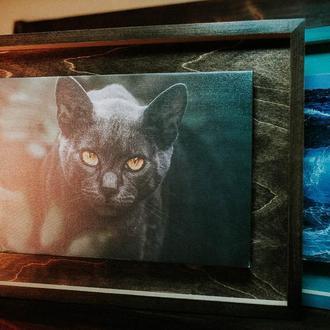 Картина на холсте Cat