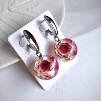 Серьги с натуральными цветами гелихризума в ювелирной смоле