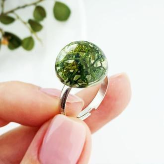 Стильное кольцо с лесным мхом в подарок девушке жене сестре (модель № 2674) Glassy Flowers