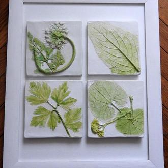 Картина 3D, картина из гипса, гипсовый барельеф, гербарий