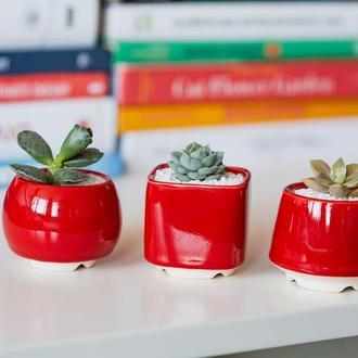 Красный керамический горшок для кактусов, суккулентов, размер М