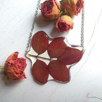 Крупный бордовый кулон  с настоящими осенними листочками розы