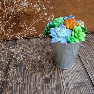 Цветочная композиция Суккуленты в ведерке