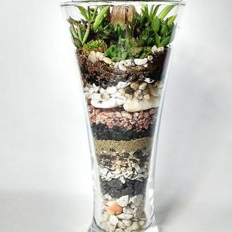 Флорариум с композицией из суккулентов в стеклянной вазе