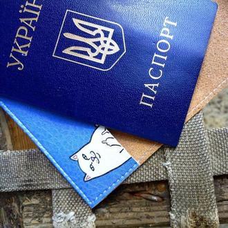 Обкладинка для паспорта (Кіт Lord Nermal)