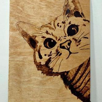"Картина ""Котик"""