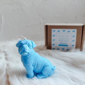 Свечка Мопсик, голубая