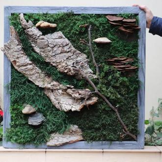 """Картина из стабилизированного мха """"Норвежский лес"""""""