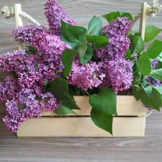 Деревянная корзина, кашпо бордового цвета для подарочных композиций, 26*15*30 см