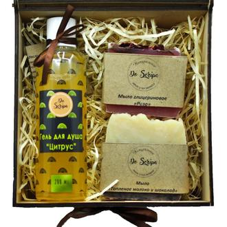 Подарочный набор Шампунь витаминный Натуральное мыло Do scripa
