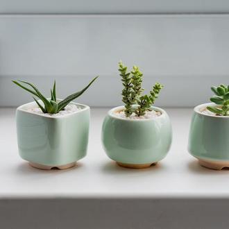 Мятный керамический горшок для кактусов, суккулентов, размер М