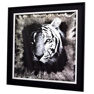 Картина за дзеркалом Night Tiger №1801