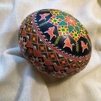 Писанка на страусином яйце «С лошатками»