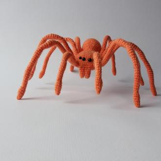 Оранжевый паук