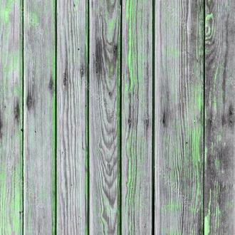 Фотофон виниловый серое дерево с зеленым