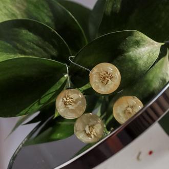 Нежные серьги из эпоксидной смолы с цветками гипсофилы