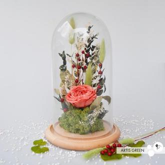 Роза в колбе «Коралл» со стабилизированная роза. Оригинальный подарок!
