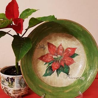 Poinsettia Авторська декоративна тарілка
