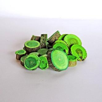 Набір спилов (зрізів) асорті зелених 25шт (20-35мм)
