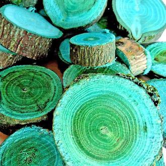 Набор спилов (срезов) ассорти синих 50шт (20-35мм)