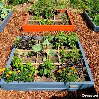 Декоративный огород. Приподнятые высокие грядки. Ограждения для грядок и клумб.