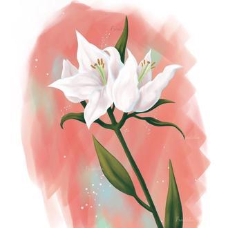 Нежный цветок лилия. Иллюстрация для печати на открытке, кружке, футболке, сумке
