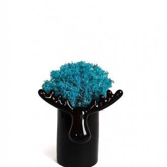 Стабилизированный мох вазон Reindeer Moss b/222/01/850/10 голубой