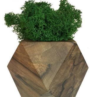 Стабилизированный мох вазон Reindeer Moss b/093/01/700/9 темно-зеленый коричневый