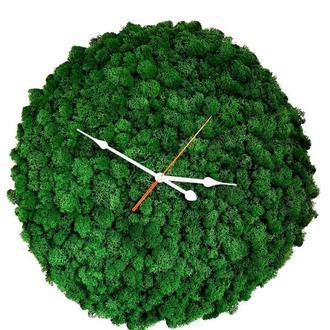 Часы Стабилизированный мох Reindeer Moss b/055/02/550/55 темно-зеленый
