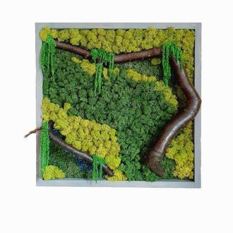 Картина из мха Reindeer Moss W20/450/04/800 50x50 зеленый
