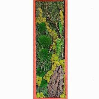 Картина из мха Reindeer Moss W20/45/04/600 30х90 зеленый