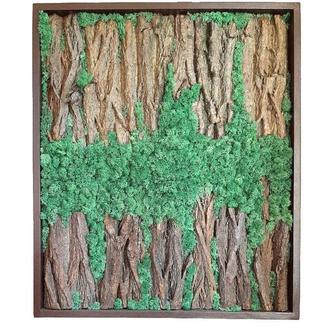 Картина из мха Reindeer Moss W20/867/04/700 80х67 зеленый