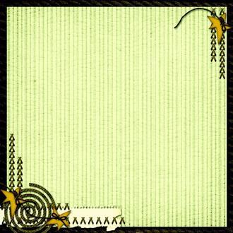 Фотофон виниловый матовый BGS0079 50х50см