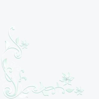 Фотофон виниловый матовый BGS0086 50х50см